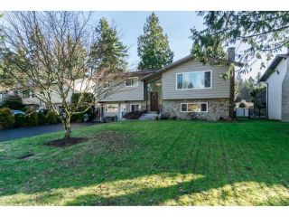 "Main Photo: 4546 201 Street in Langley: Langley City House for sale in ""Alice Brown"" : MLS®# R2284490"