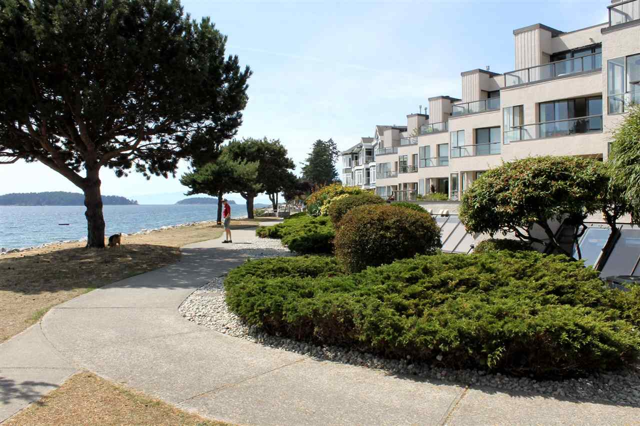 Main Photo: 211 5477 WHARF Avenue in Sechelt: Sechelt District Condo for sale (Sunshine Coast)  : MLS®# R2096430