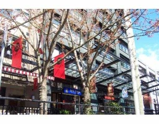 Main Photo: 301 1155 MAINLAND ST in Vancouver: Downtown VW Condo for sale (Vancouver West)  : MLS® # V583863