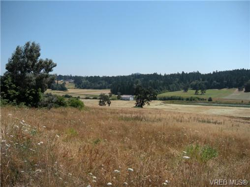 Main Photo: 1251 Mt. Newton Cross Road in SAANICHTON: CS Saanichton Land  (Central Saanich)  : MLS(r) # 336095