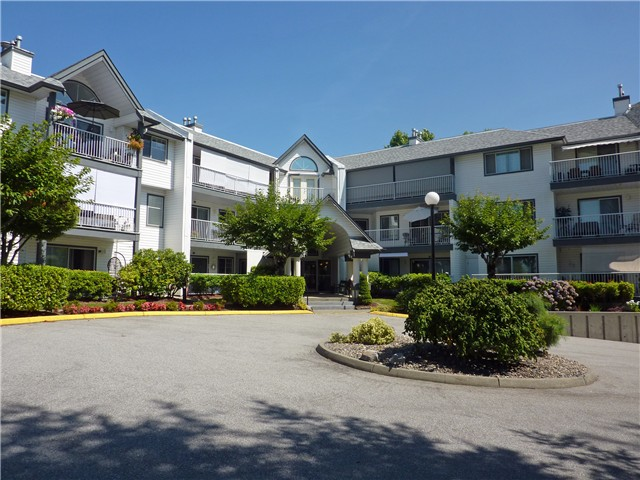 Main Photo: 101 11601 227 Street in Maple Ridge: Condo for sale : MLS®# v1106756