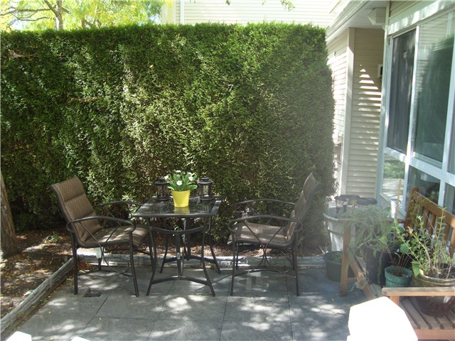 "Photo 2: 55 6577 SOUTHOAKS Crescent in Burnaby: Highgate Townhouse for sale in ""TUDOR GROVE"" (Burnaby South)  : MLS® # V1024043"