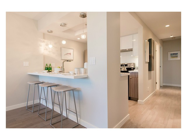 Photo 9: # 202 1388 HOMER ST in Vancouver: Yaletown Condo for sale (Vancouver West)  : MLS® # V1089754