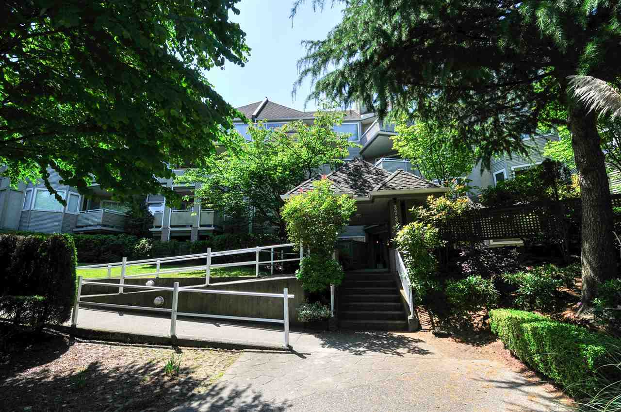 Photo 1: 111 3738 NORFOLK STREET in Burnaby: Central BN Condo for sale (Burnaby North)  : MLS® # R2074428