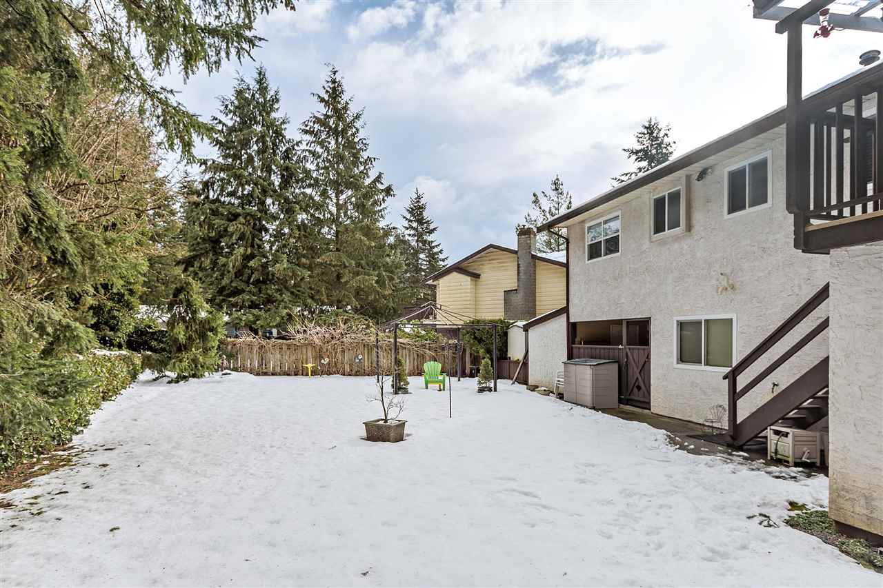 Photo 20: 3644 202A STREET in Langley: Brookswood Langley House for sale : MLS® # R2138265