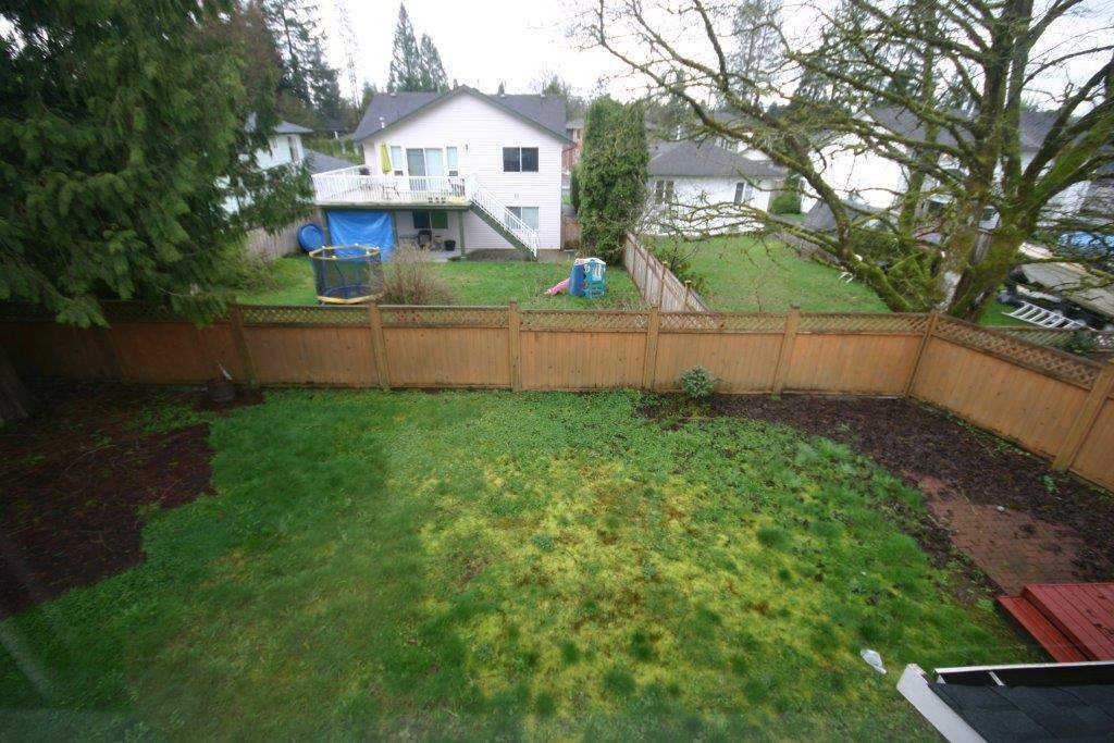 Photo 14: 21556 ASHBURY COURT in Maple Ridge: West Central House for sale : MLS(r) # R2056995