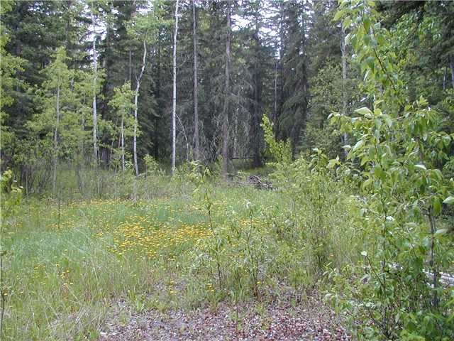 Main Photo: LOT 16 LARSON Road in Bridge Lake: Bridge Lake/Sheridan Lake Home for sale (100 Mile House (Zone 10))  : MLS® # N225314