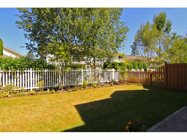 Photo 19: # 5 31235 UPPER MACLURE RD in Abbotsford: Abbotsford West Townhouse for sale : MLS® # F1400111