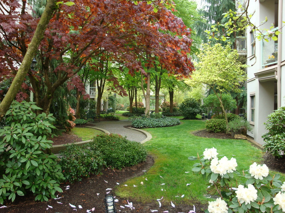 Photo 9: 401A 2615 JANE Street in Burleigh Green: Central Pt Coquitlam Home for sale ()  : MLS® # V823100