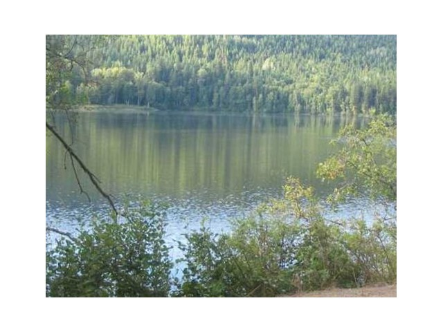 "Photo 9: LOT 13 EAGLE CREEK Road in Canim Lake: Canim/Mahood Lake Home for sale in ""HAWKINS LAKE"" (100 Mile House (Zone 10))  : MLS® # N226700"