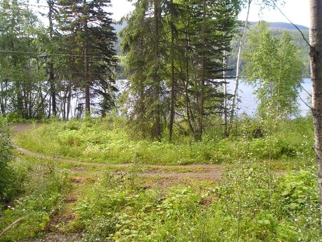 "Photo 6: LOT 13 EAGLE CREEK Road in Canim Lake: Canim/Mahood Lake Home for sale in ""HAWKINS LAKE"" (100 Mile House (Zone 10))  : MLS® # N226700"