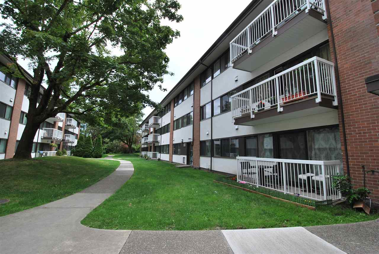 Main Photo: 103 8040 RYAN ROAD in Richmond: South Arm Condo for sale : MLS® # R2079966