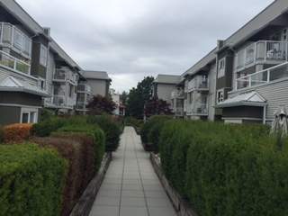Photo 2: 204 4738 53 STREET in Delta: Delta Manor Condo for sale (Ladner)  : MLS(r) # R2083795