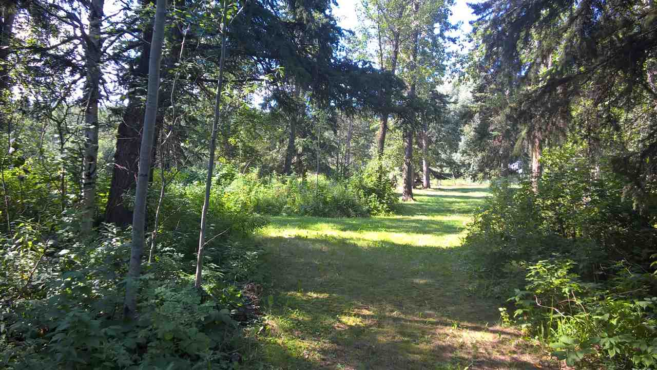Photo 11: 18 51306 RGE RD 262 RD in Rural Parkland County: Woodland Acres House for sale : MLS® # E4032761