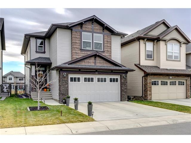 Main Photo: 45 Skyview Springs RD NE in Calgary: Skyview Ranch House for sale : MLS® # C4088440