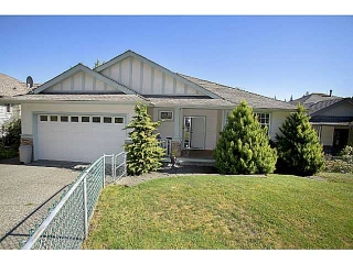 Main Photo: 23903 133RD AV in Maple Ridge: Silver Valley House for sale : MLS® # V1028061