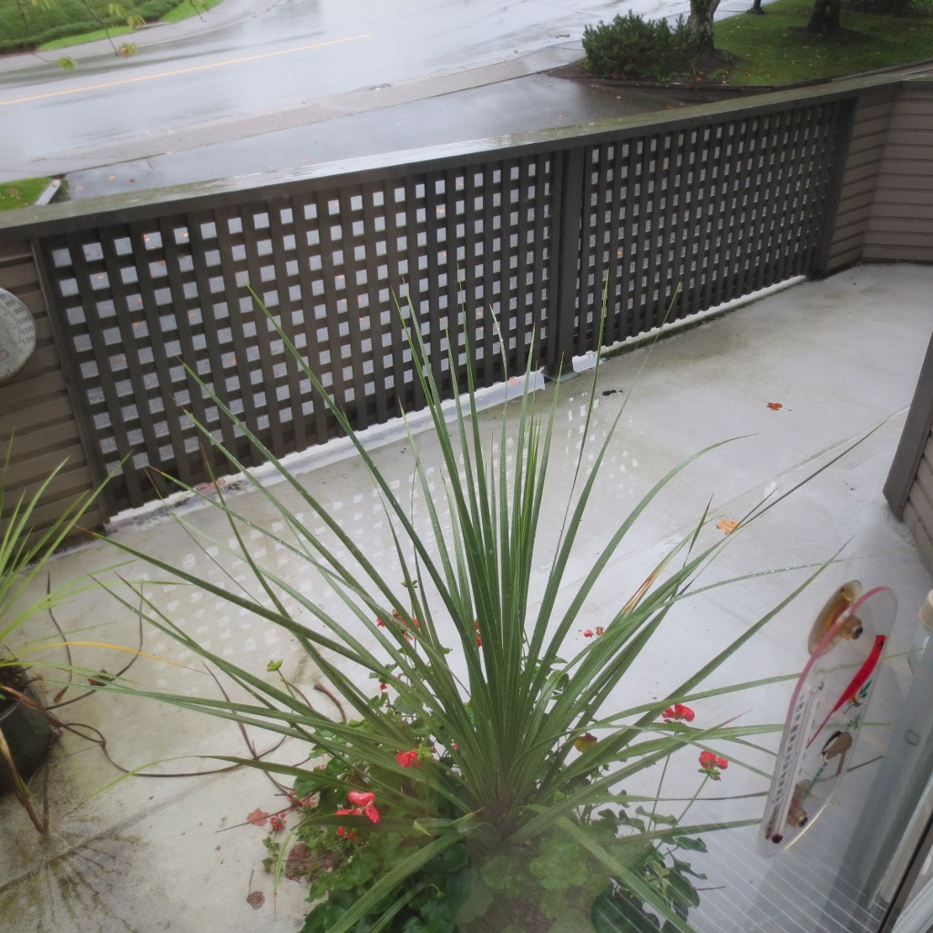 Photo 11: 41 1271 Lasalle Place in Coquitlam: Canyon Springs Townhouse for sale