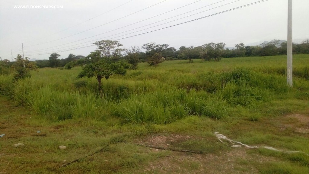 Land in Penonome Panama for Sale