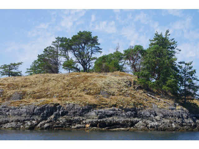 Photo 2: Photos: WILLIAM ISLAND in Pender Harbour: Pender Harbour Egmont Home for sale (Sunshine Coast)  : MLS®# V1020229