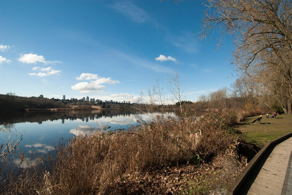 Photo 29: 5545 MORELAND DRIVE in Burnaby: Deer Lake Place House for sale (Burnaby South)  : MLS® # R2035415