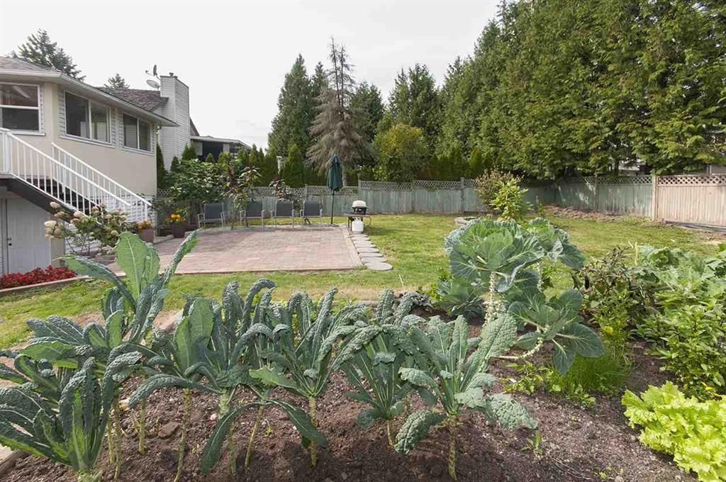 Photo 5: 15845 80 Avenue in Surrey: Fleetwood Tynehead House for sale : MLS® # R2000839