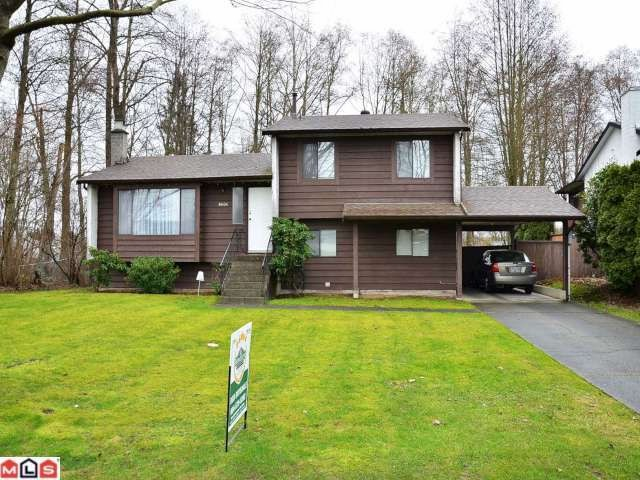 Main Photo: 8606 E TULSY Crescent in Surrey: Queen Mary Park Surrey House for sale : MLS® # F1204537