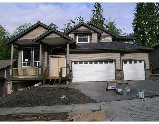 Main Photo: 13257 239B ST in Maple Ridge: East Central House for sale : MLS® # V593954