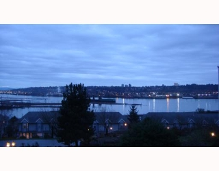 Main Photo: #313 60 Richmond St in New Westminster: Fraserview NW Condo for sale : MLS® # V801270