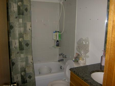 Photo 9: 99 ALSIP DR.: Residential for sale (Canada)  : MLS® # 2821110