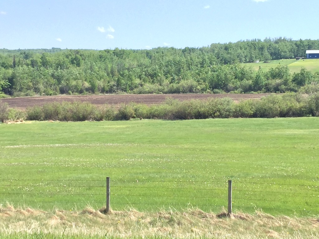 Main Photo: Lot 3 Township Road 585B: Rural Land/Vacant Lot for sale (Woodlands County)  : MLS(r) # 40311