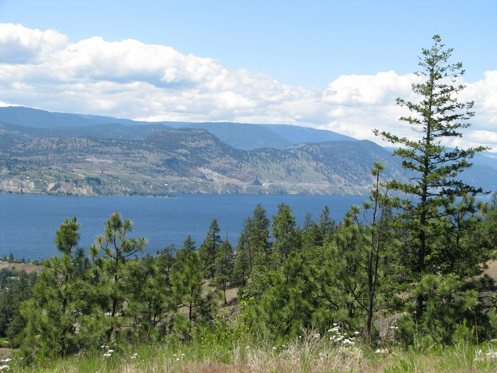 Main Photo: 131 Granite Place in : Stone Brook Land Only for sale (Naramata)  : MLS(r) # 143933