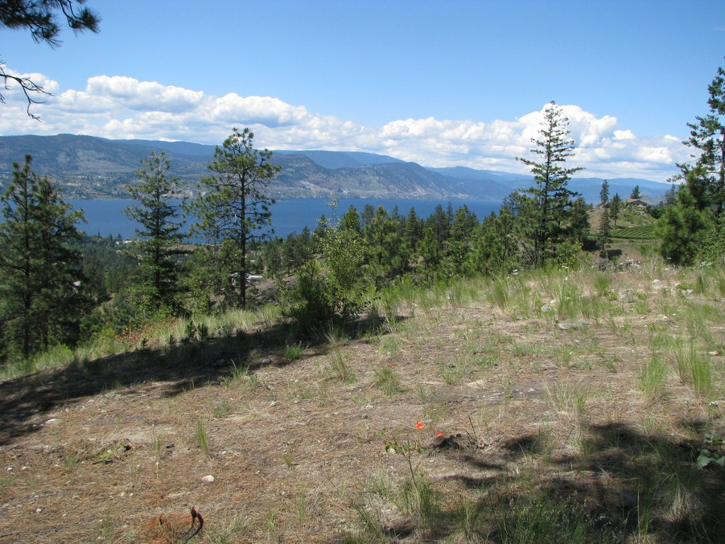 Photo 11: 131 Granite Place in : Stone Brook Land Only for sale (Naramata)  : MLS(r) # 143933