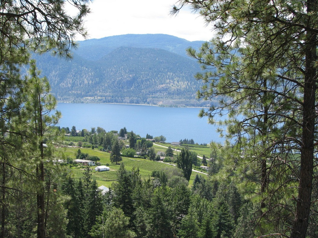 Photo 5: 131 Granite Place in : Stone Brook Land Only for sale (Naramata)  : MLS(r) # 143933