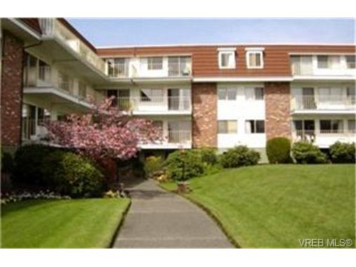 Main Photo: 117 1680 Poplar Avenue in VICTORIA: SE Mt Tolmie Condo Apartment for sale (Saanich East)  : MLS® # 246804