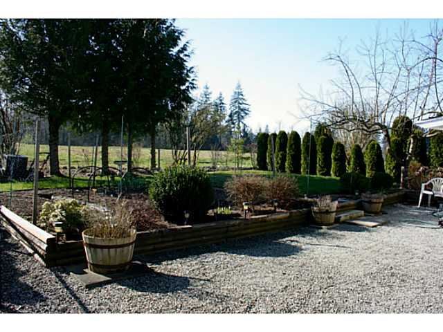 Photo 3: # 206 3665 244TH ST in Langley: Otter District House for sale : MLS® # F1434487