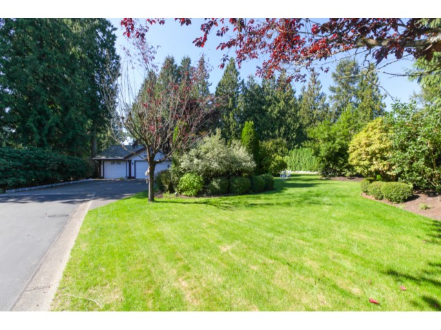 "Main Photo: 10 23100 129TH Avenue in Maple Ridge: East Central House for sale in ""CEDAR RIDGE ESTATES"" : MLS® # V1078571"