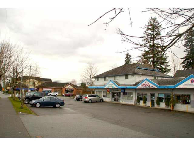 Main Photo: SHOPPING PLAZA--16814-104 AVENUE in surrey: Fraser Heights Home for sale (North Surrey)