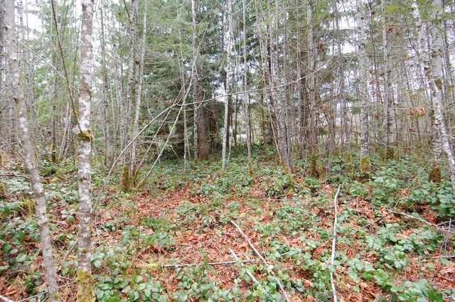Photo 5: Photos: LOT 6 WALL STREET in HONEYMOON BAY: Lots/Acreage for sale : MLS®# 316008