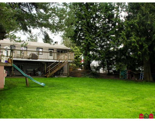 Photo 10: 2877 266B Street in Langley: Aldergrove Langley House for sale : MLS® # F2809800