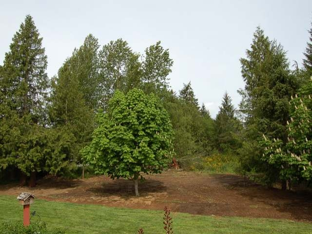 treed lot in area of newer homes
