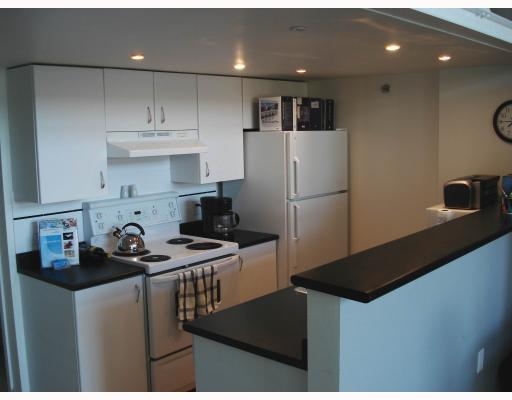Photo 3: 303 338 W 8TH Avenue in Vancouver: Mount Pleasant VW Condo for sale (Vancouver West)  : MLS(r) # V701015