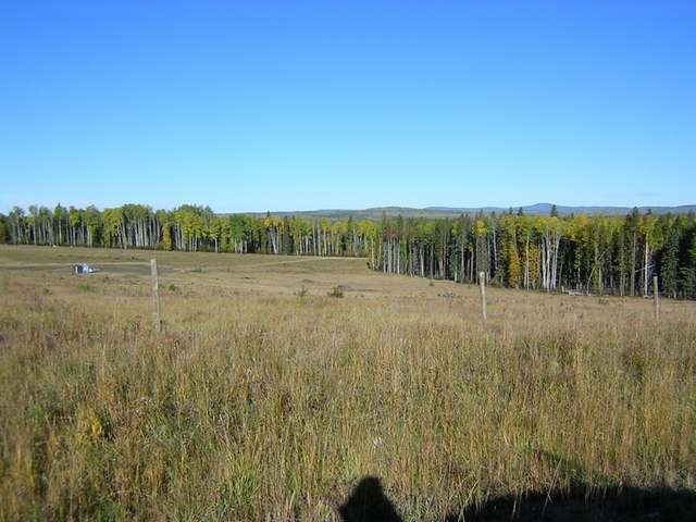 Main Photo: : Edson Rural Land for sale ()  : MLS(r) # 22122