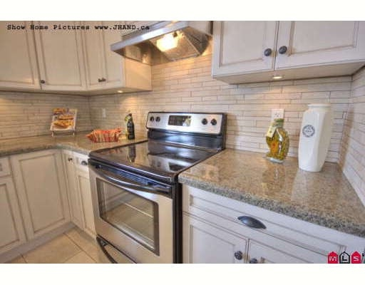 Photo 6:  in Surrey, BC: Sullivan Heights House for sale (Surrey)  : MLS® # F2908943