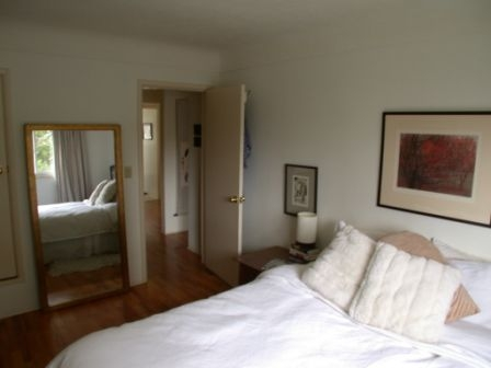 Photo 6: 1073 Davie St in Victoria: Residential for sale : MLS® # 289115