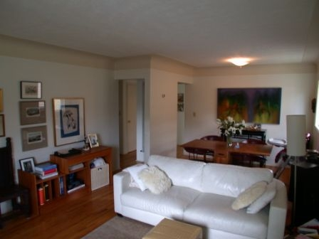 Photo 3: 1073 Davie St in Victoria: Residential for sale : MLS® # 289115