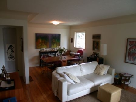 Photo 4: 1073 Davie St in Victoria: Residential for sale : MLS® # 289115