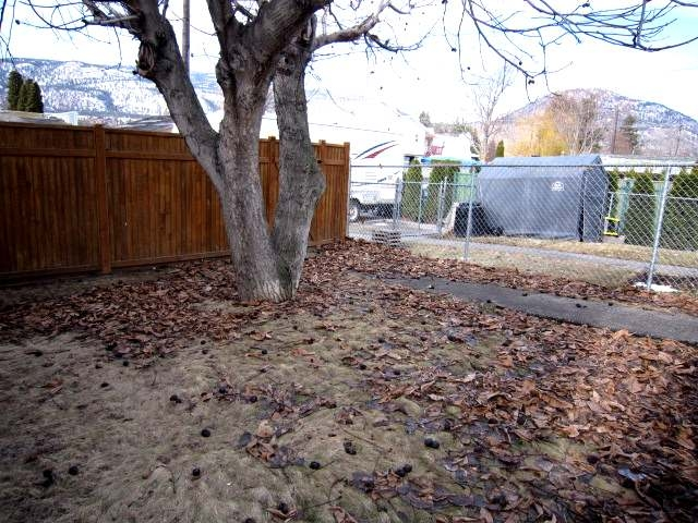 Photo 16: 233 MAPLE STREET in Penticton: Other for sale (102)  : MLS(r) # 113163