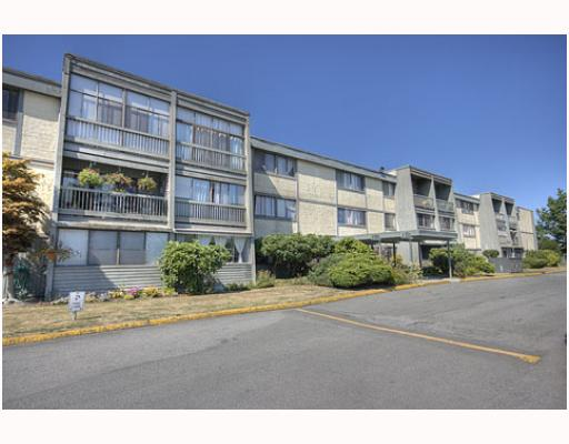 "Main Photo: 309 3451 SPRINGFIELD Drive in Richmond: Steveston North Condo for sale in ""ADMIRAL COURT"" : MLS®# V784733"