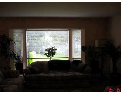 Photo 4: 3613 DAVIE Street in Abbotsford: Abbotsford East House for sale : MLS(r) # F2818725