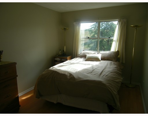 Photo 7: Photos: 301 570 E 8TH Avenue in Vancouver: Mount Pleasant VE Condo for sale (Vancouver East)  : MLS(r) # V812547